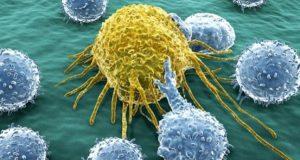 Новый прорыв в лечении: помощь иммунной системе в поиске и уничтожении раковых клеток