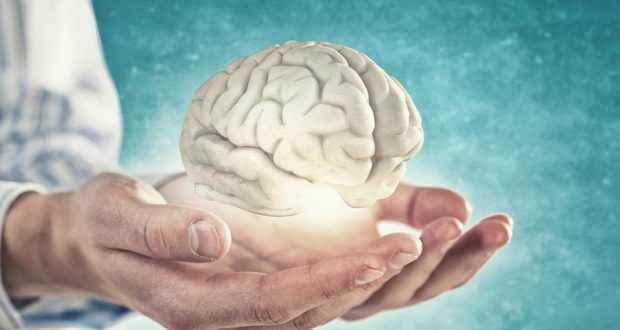 Индийские исследователи создали клетки мозга человека для изучения сложных неврологических расстройств