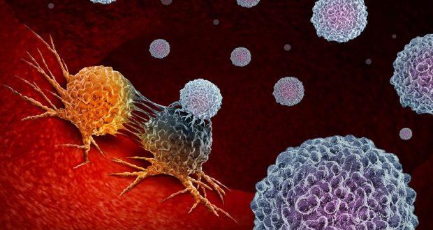 Клетки используют воспоминания о прошлом воспалении, чтобы реагировать на новые угрозы