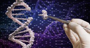 Редактирование генов CRISPR: Основные преимущества изменения нашего естественного мира
